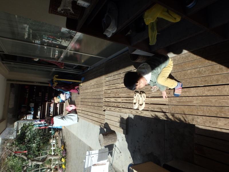 ひばり-2016年3月