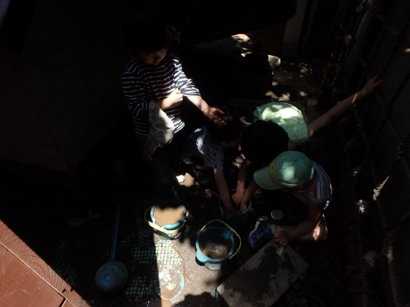 ひばり-2015年5月
