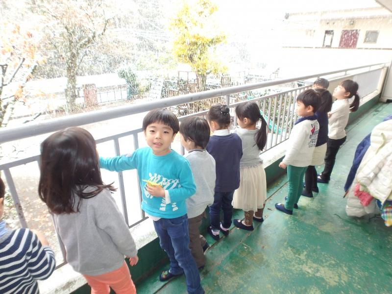 ひばり-2016年11月